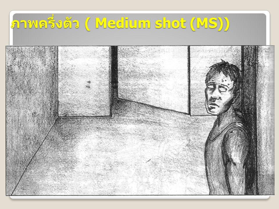 ภาพครึ่งตัว ( Medium shot (MS))