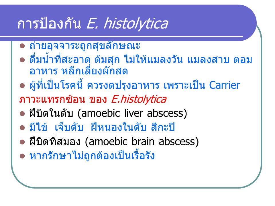 การป้องกัน E. histolytica