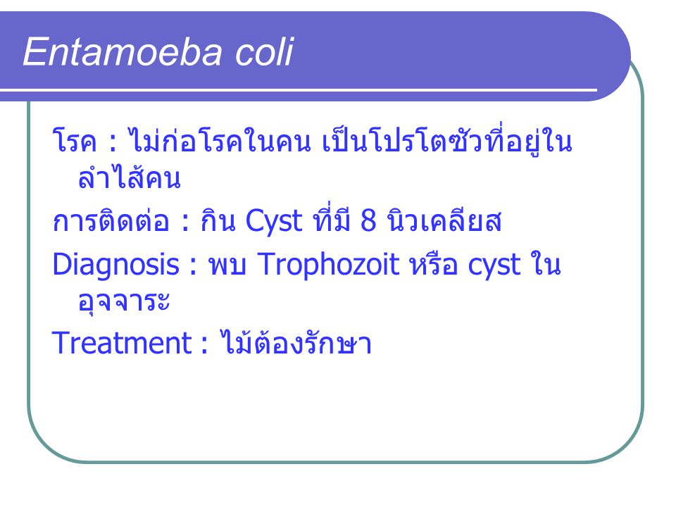 Entamoeba coli โรค : ไม่ก่อโรคในคน เป็นโปรโตซัวที่อยู่ในลำไส้คน
