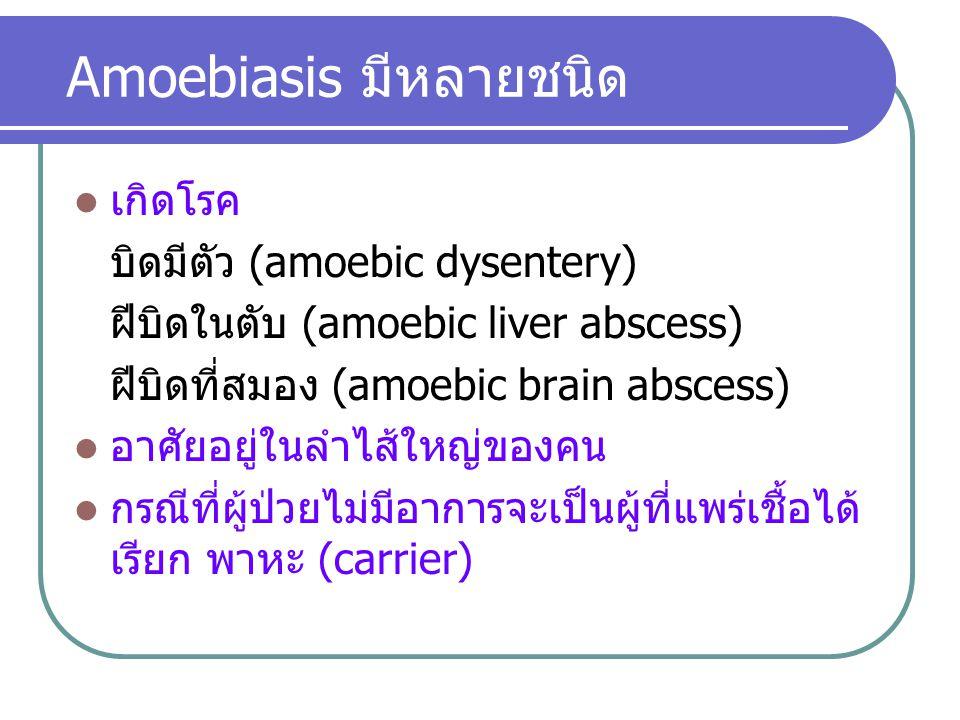 Amoebiasis มีหลายชนิด