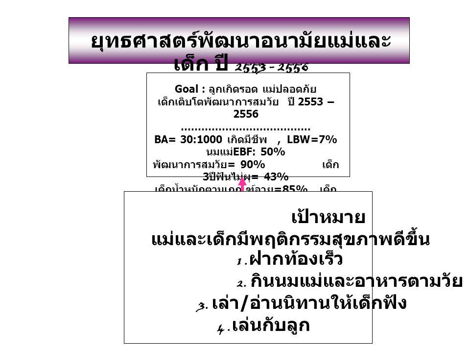 ยุทธศาสตร์พัฒนาอนามัยแม่และเด็ก ปี 2553 - 2556