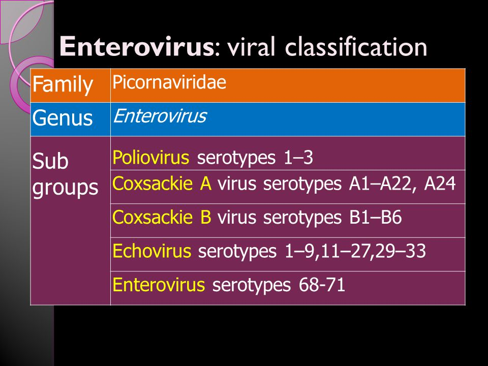 Enterovirus: viral classification