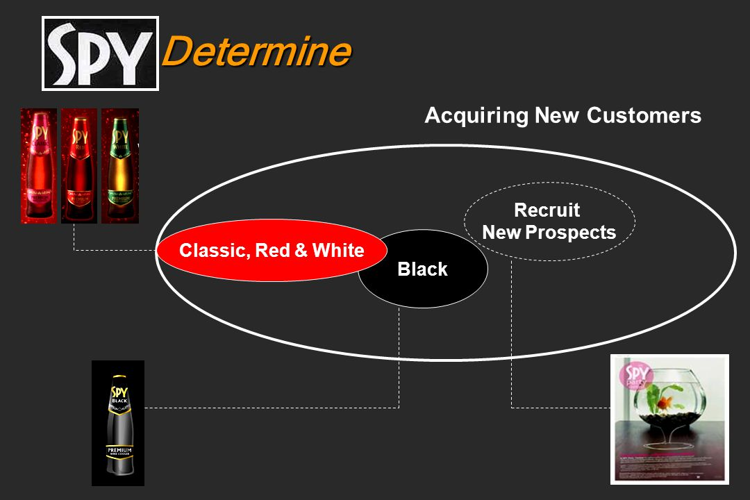Determine Acquiring New Customers Recruit New Prospects