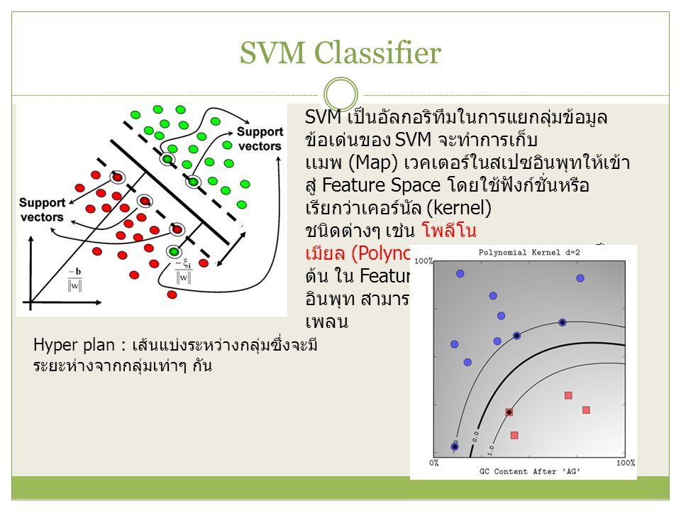 SVM Classifier