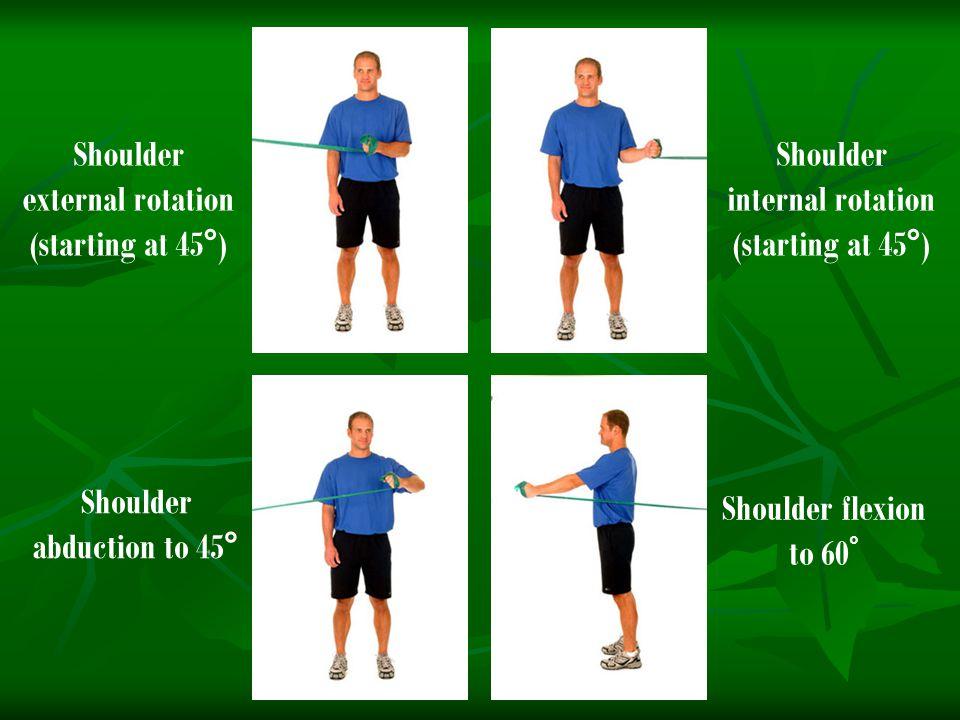 Shoulder external rotation (starting at 45°)
