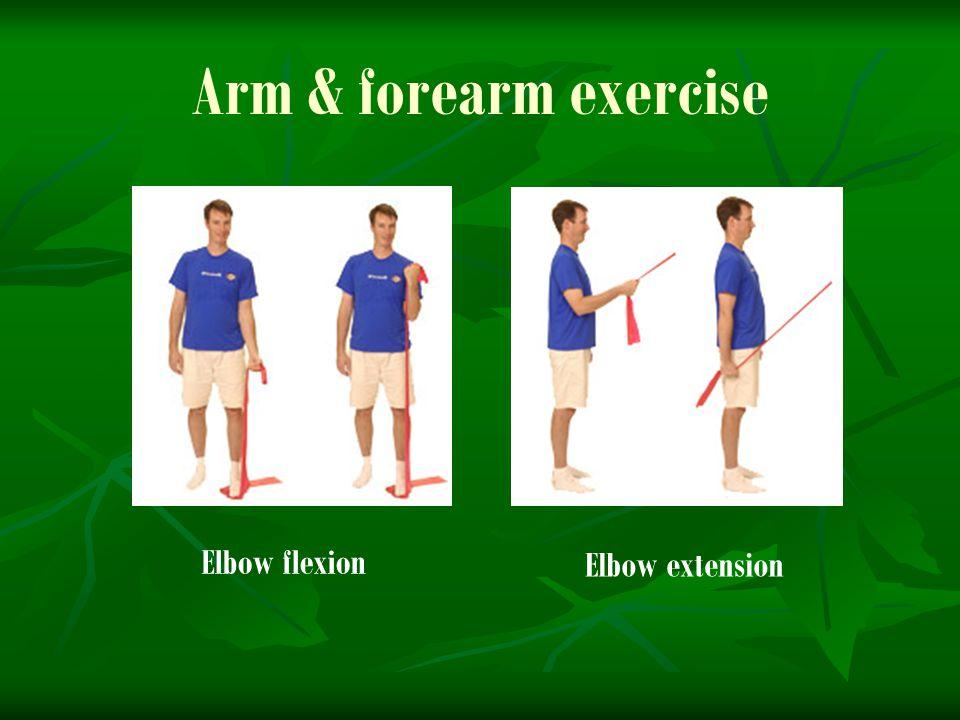Arm & forearm exercise Elbow flexion Elbow extension