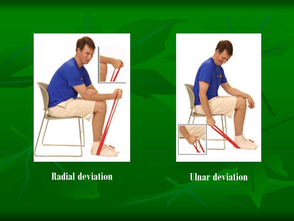 Radial deviation Ulnar deviation