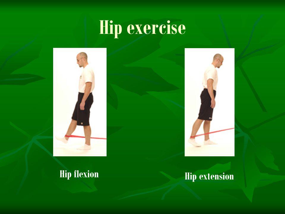 Hip exercise Hip flexion Hip extension