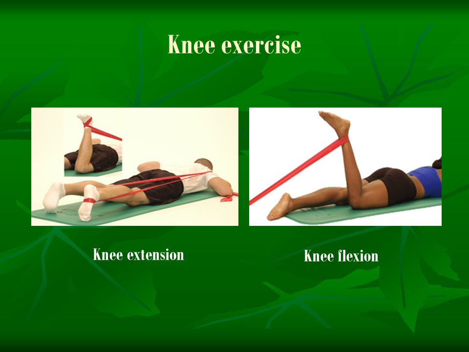 Knee exercise Knee extension Knee flexion
