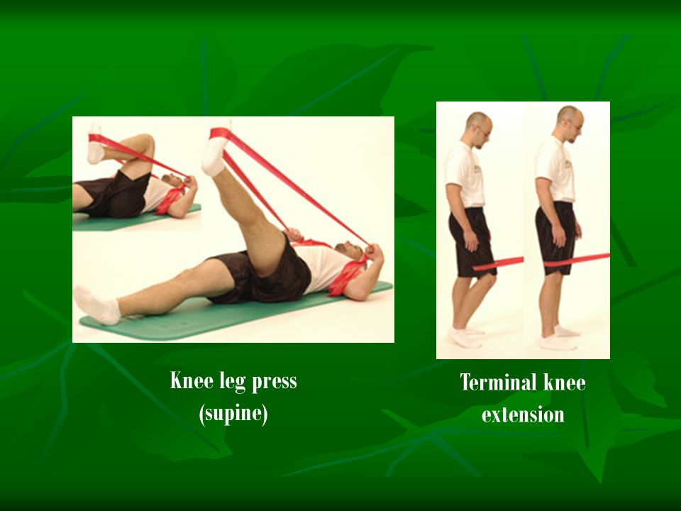 Knee leg press (supine) Terminal knee extension