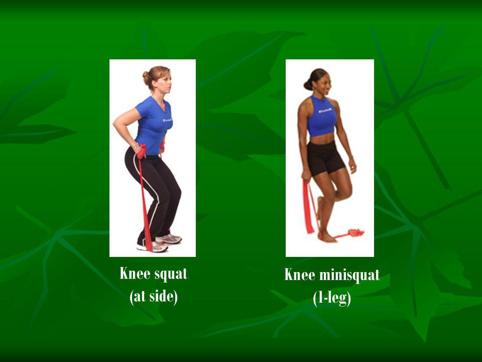 Knee squat (at side) Knee minisquat (1-leg)