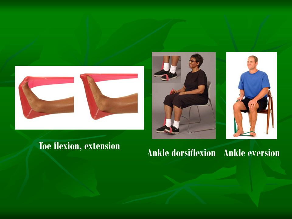 Toe flexion, extension Ankle dorsiflexion Ankle eversion