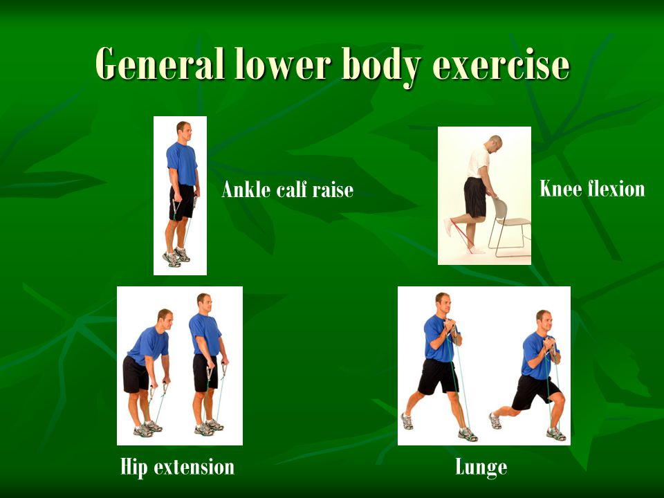 General lower body exercise