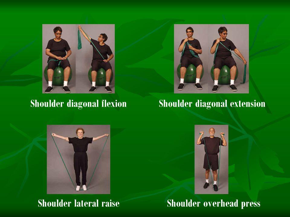 Shoulder diagonal flexion Shoulder diagonal extension