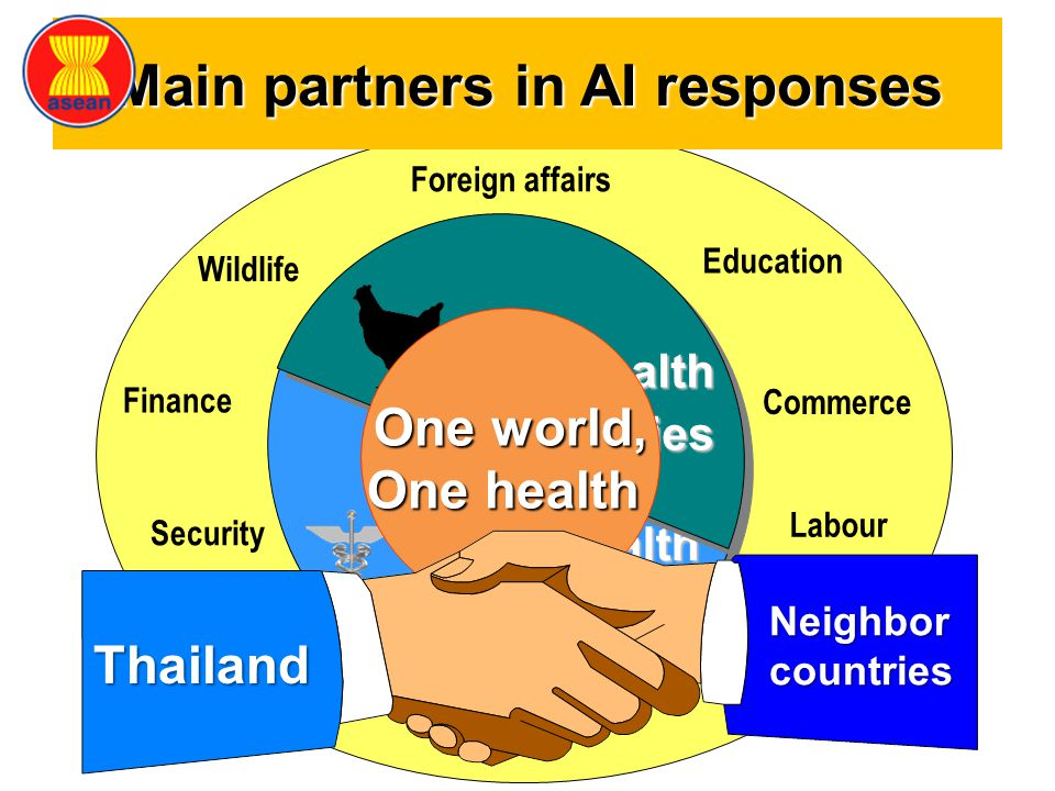Main partners in AI responses