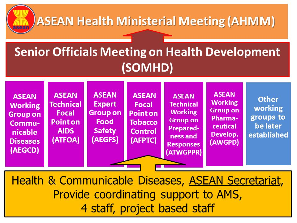 ASEAN Health Ministerial Meeting (AHMM)