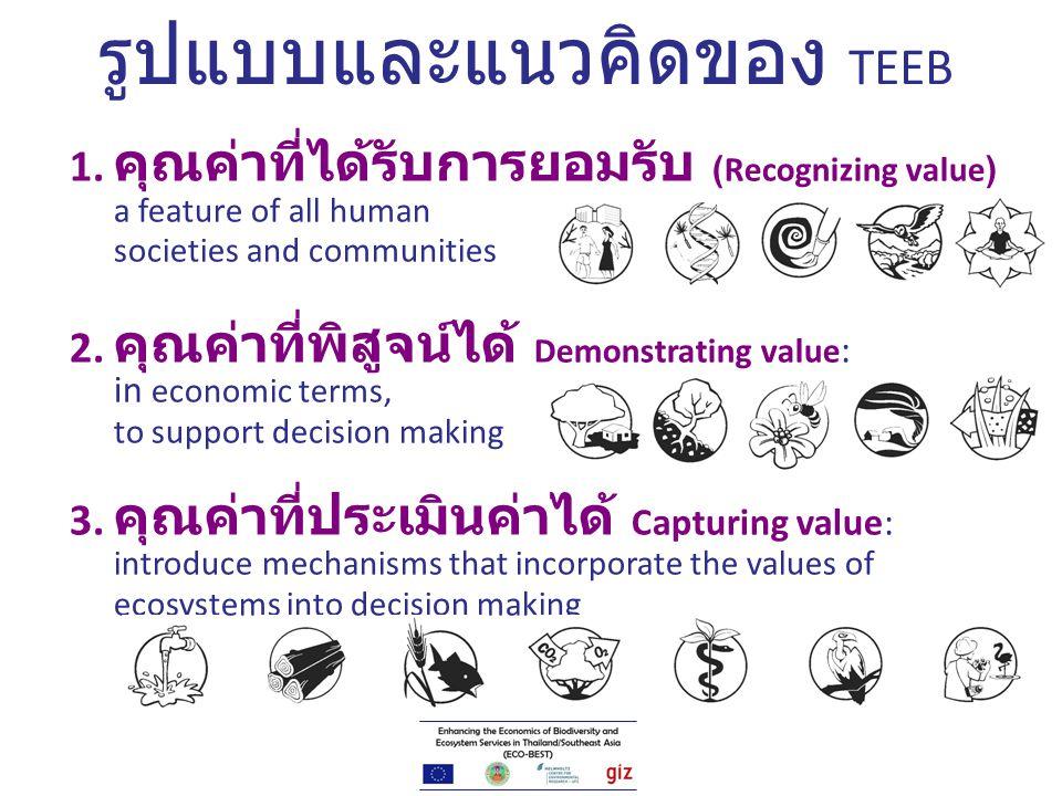 รูปแบบและแนวคิดของ TEEB