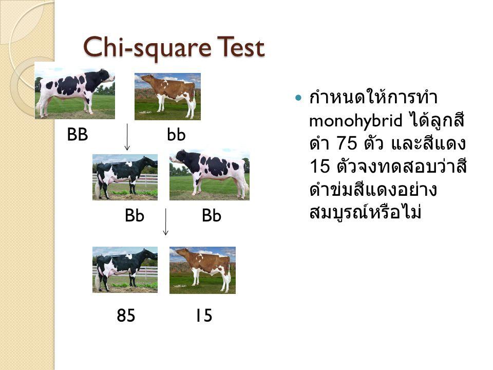 Chi-square Test กำหนดให้การทำ monohybrid ได้ลูกสีดำ 75 ตัว และสีแดง 15 ตัวจง ทดสอบว่าสีดำข่มสีแดงอย่าง สมบูรณ์หรือไม่