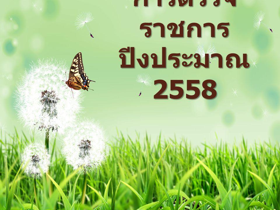 การตรวจราชการ ปีงประมาณ 2558