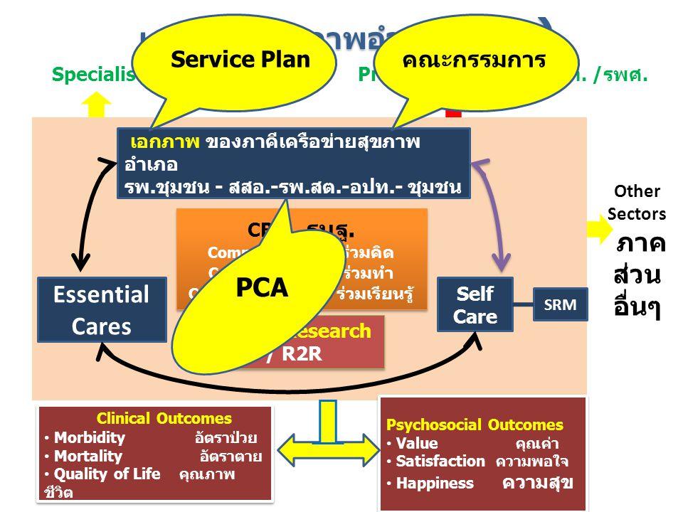 เครือข่ายสุขภาพอำเภอ (DHS)