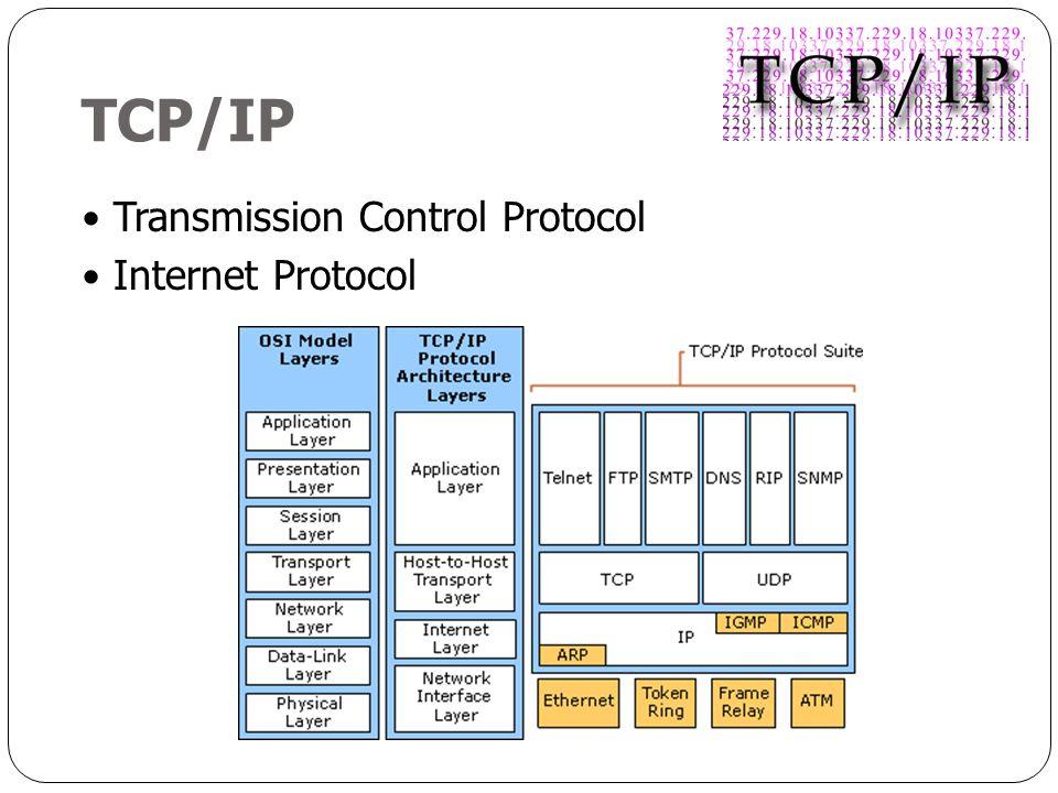 TCP/IP Transmission Control Protocol Internet Protocol
