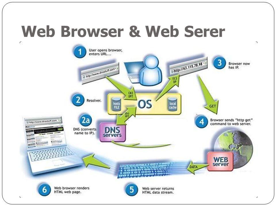 Web Browser & Web Serer