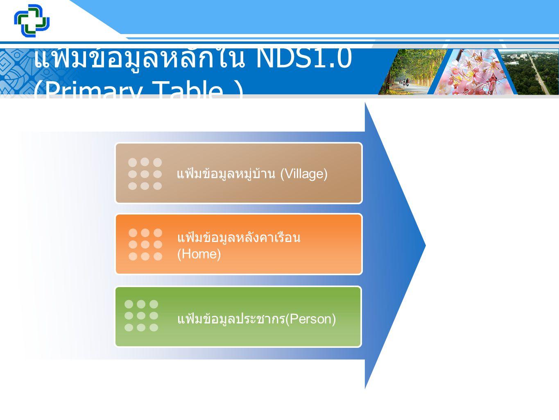 แฟ้มข้อมูลหลักใน NDS1.0 (Primary Table )