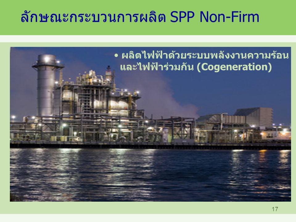 ลักษณะกระบวนการผลิต SPP Non-Firm