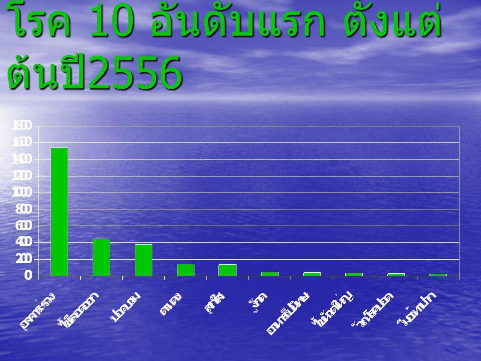 โรค 10 อันดับแรก ตั้งแต่ต้นปี2556