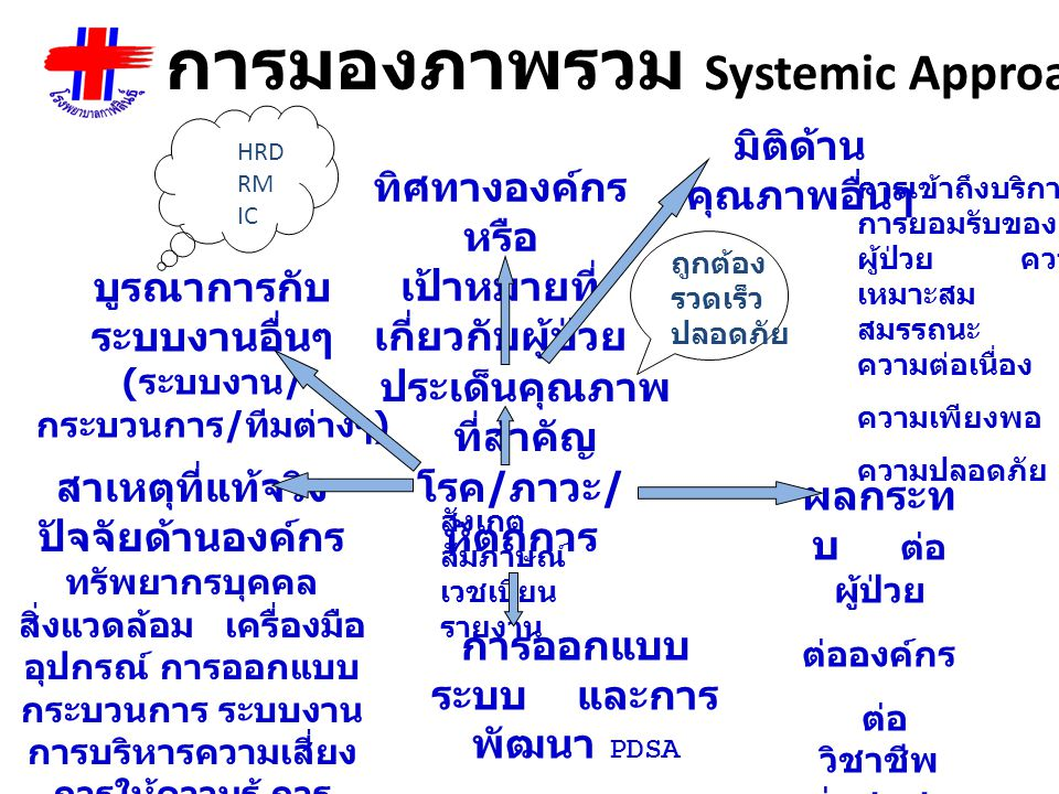 การมองภาพรวม Systemic Approach