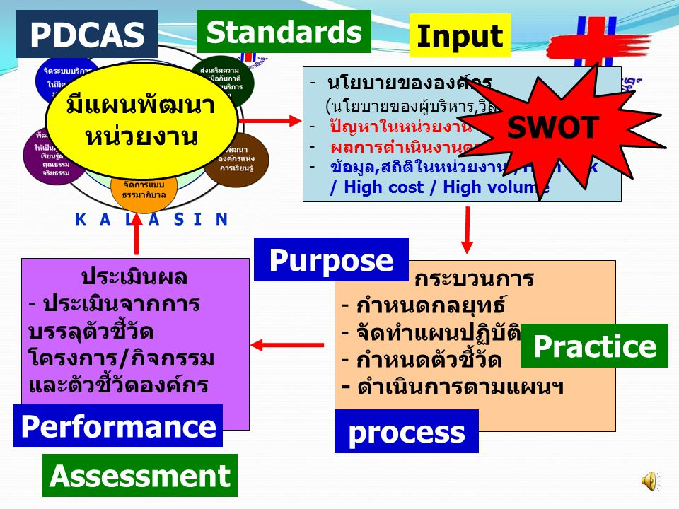 PDCAS Standards Input SWOT Purpose Practice Performance process