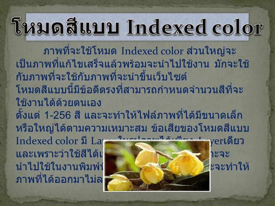 โหมดสีแบบ Indexed color