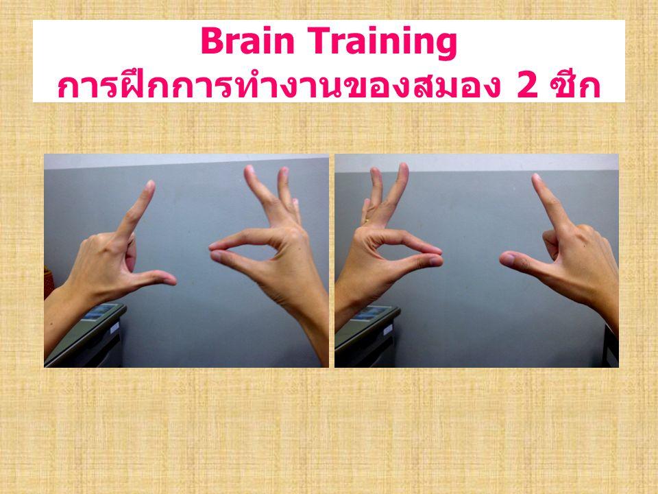 Brain Training การฝึกการทำงานของสมอง 2 ซีก