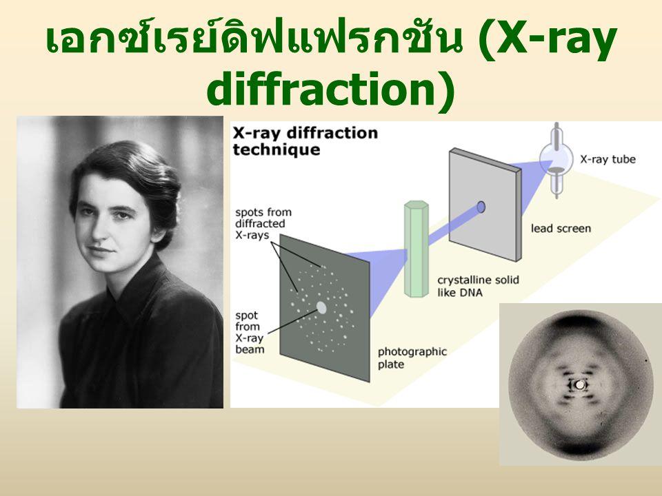 เอกซ์เรย์ดิฟแฟรกชัน (X-ray diffraction)