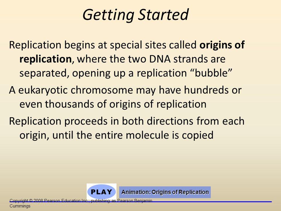 Animation: Origins of Replication