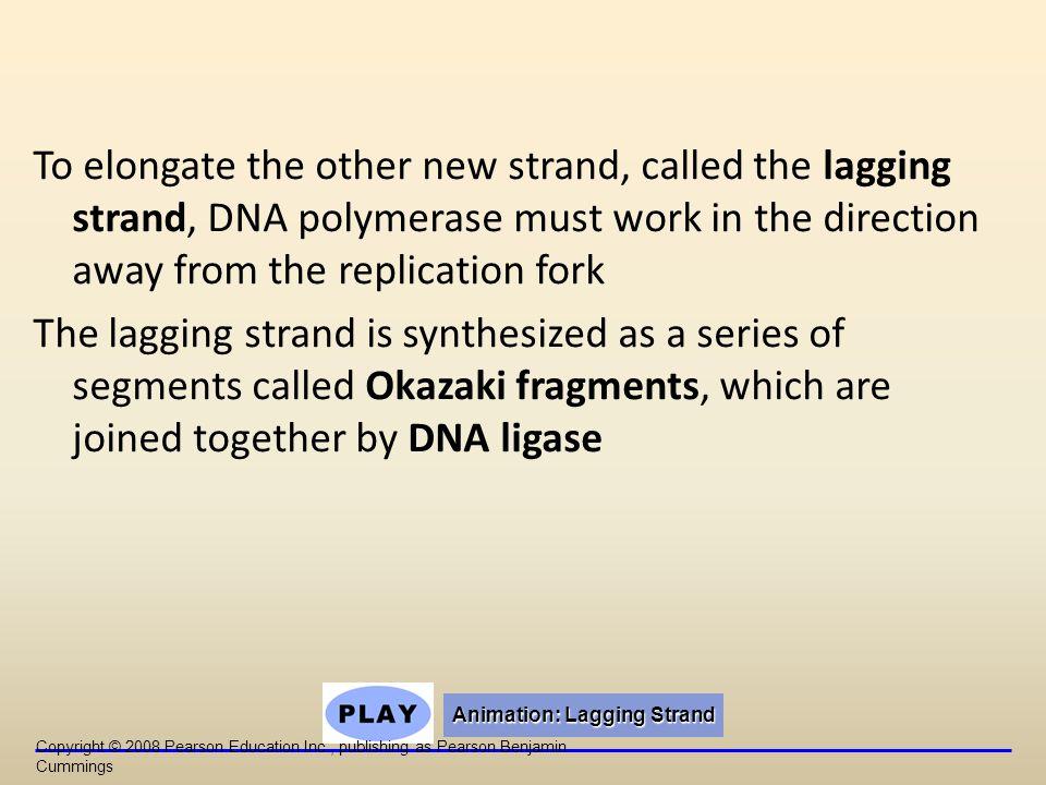 Animation: Lagging Strand