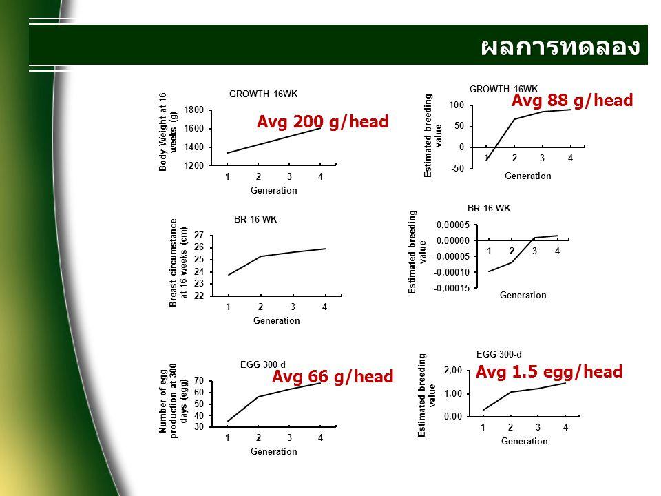 ผลการทดลอง Avg 88 g/head Avg 200 g/head Avg 1.5 egg/head Avg 66 g/head