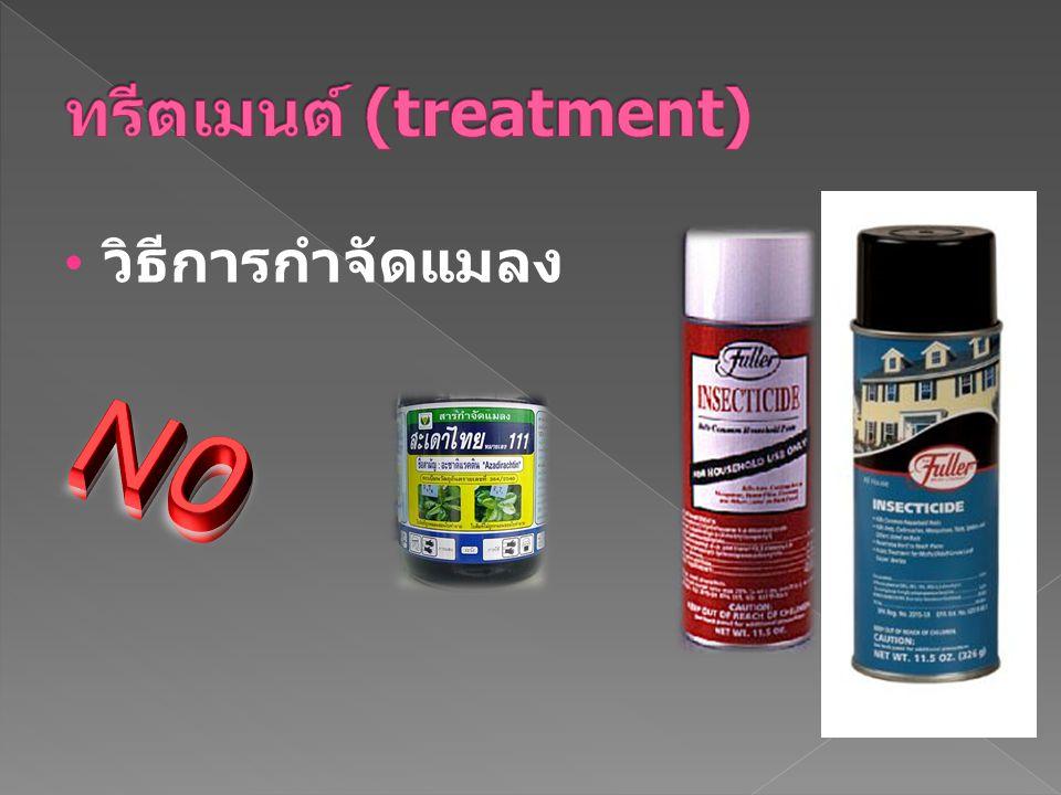 ทรีตเมนต์ (treatment)