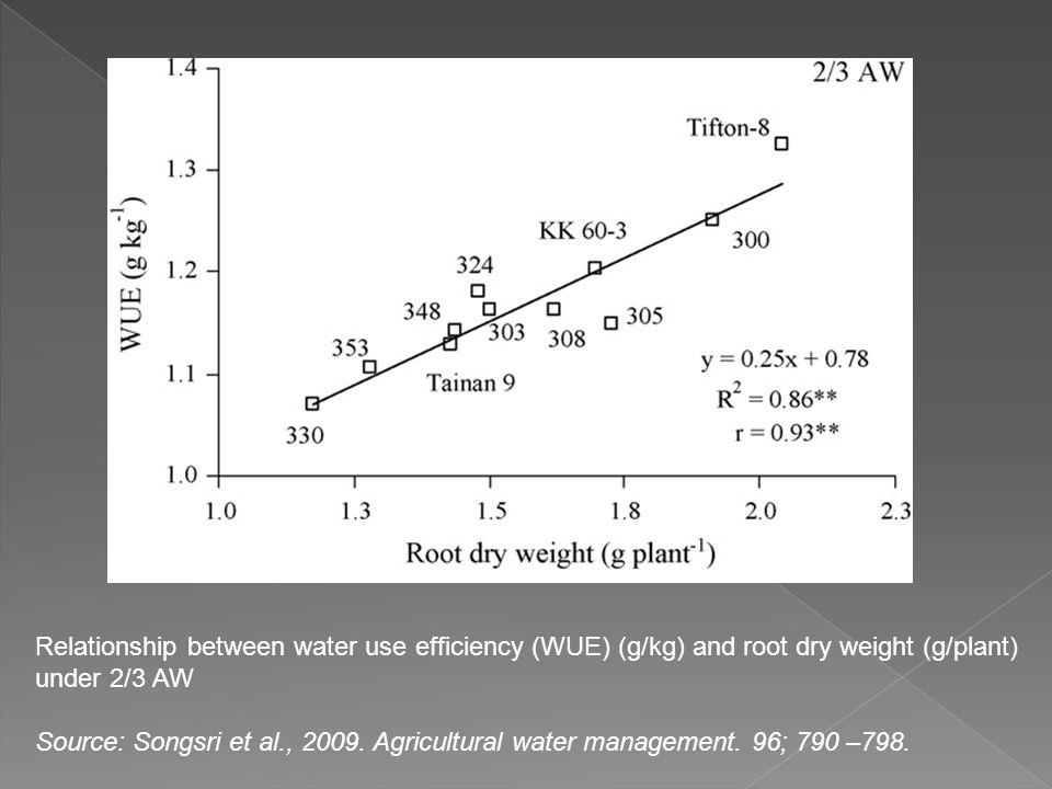 Relationship between water use efficiency (WUE) (g/kg) and root dry weight (g/plant) under 2/3 AW