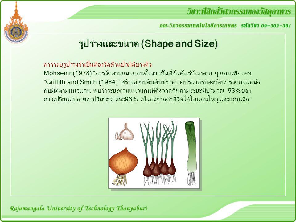 รูปร่างและขนาด (Shape and Size)