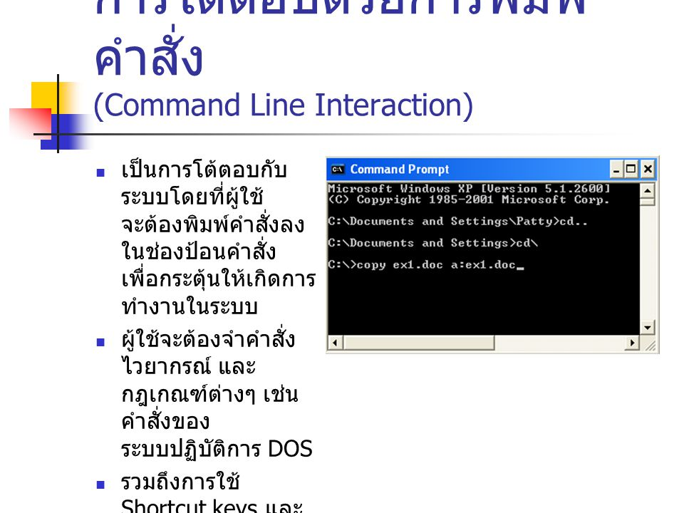 การโต้ตอบด้วยการพิมพ์คำสั่ง (Command Line Interaction)