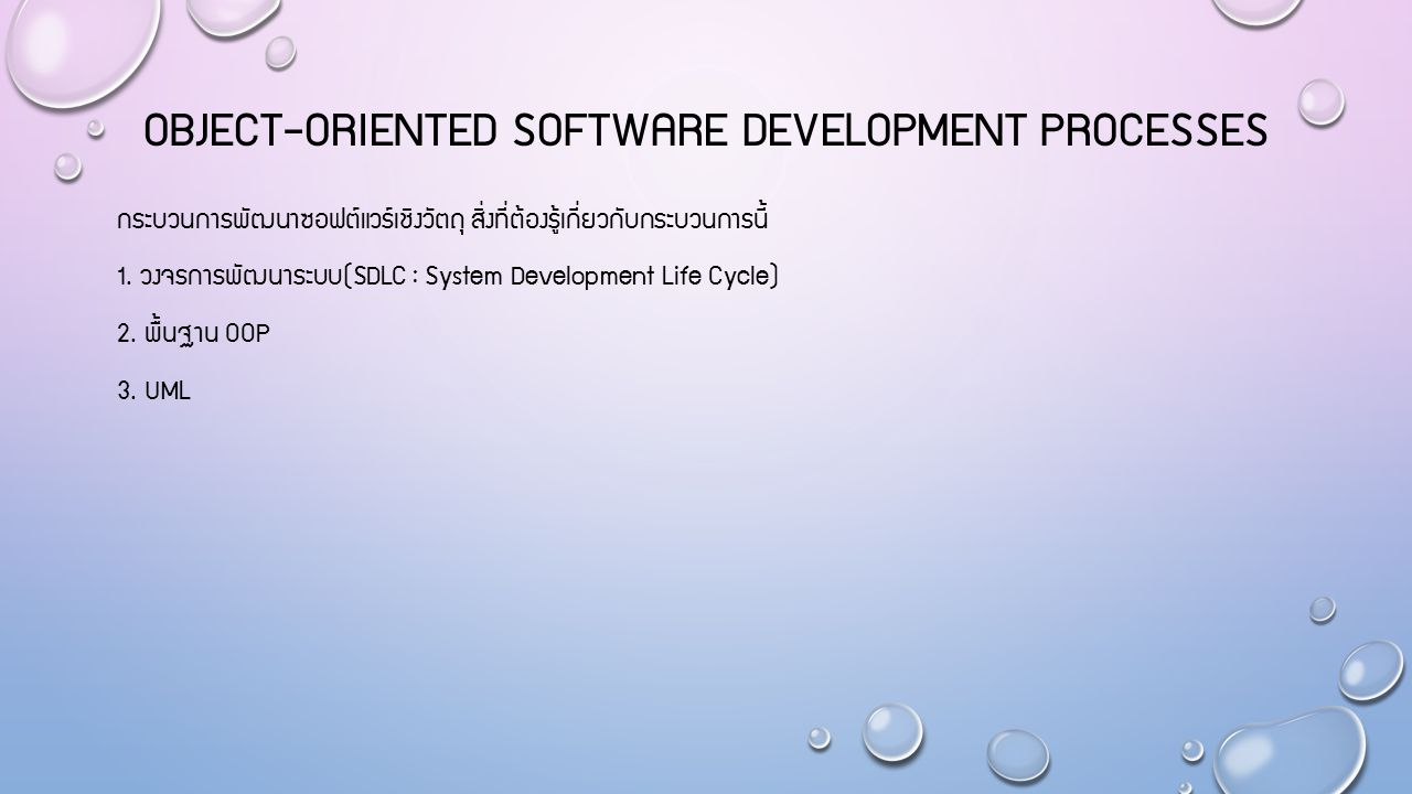 Object-oriented software development processes