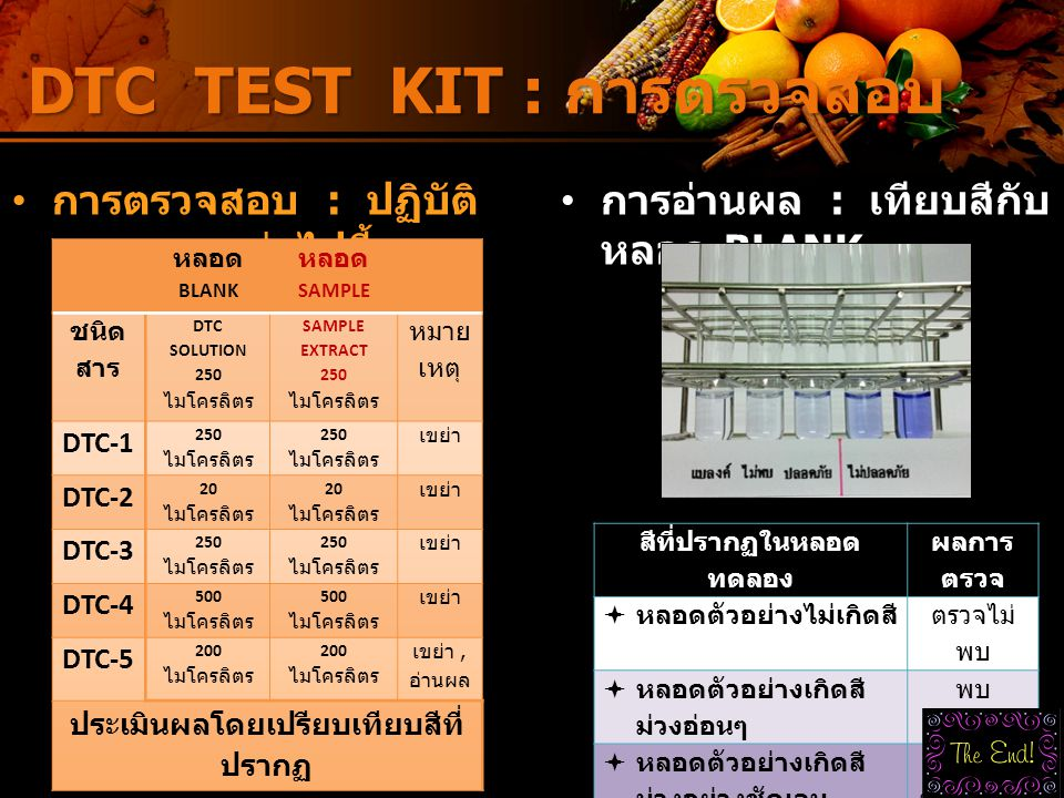 DTC TEST KIT : การตรวจสอบ