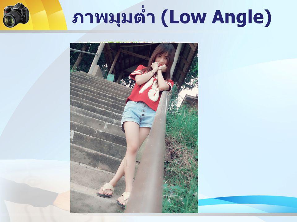 ภาพมุมต่ำ (Low Angle)