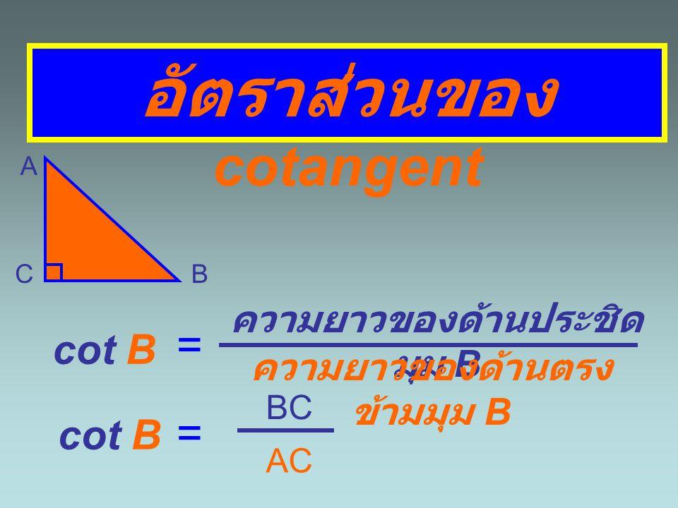 อัตราส่วนของ cotangent