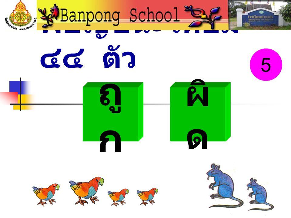 พยัญชนะไทยมี ๔๔ ตัว 5 ถูก ผิด