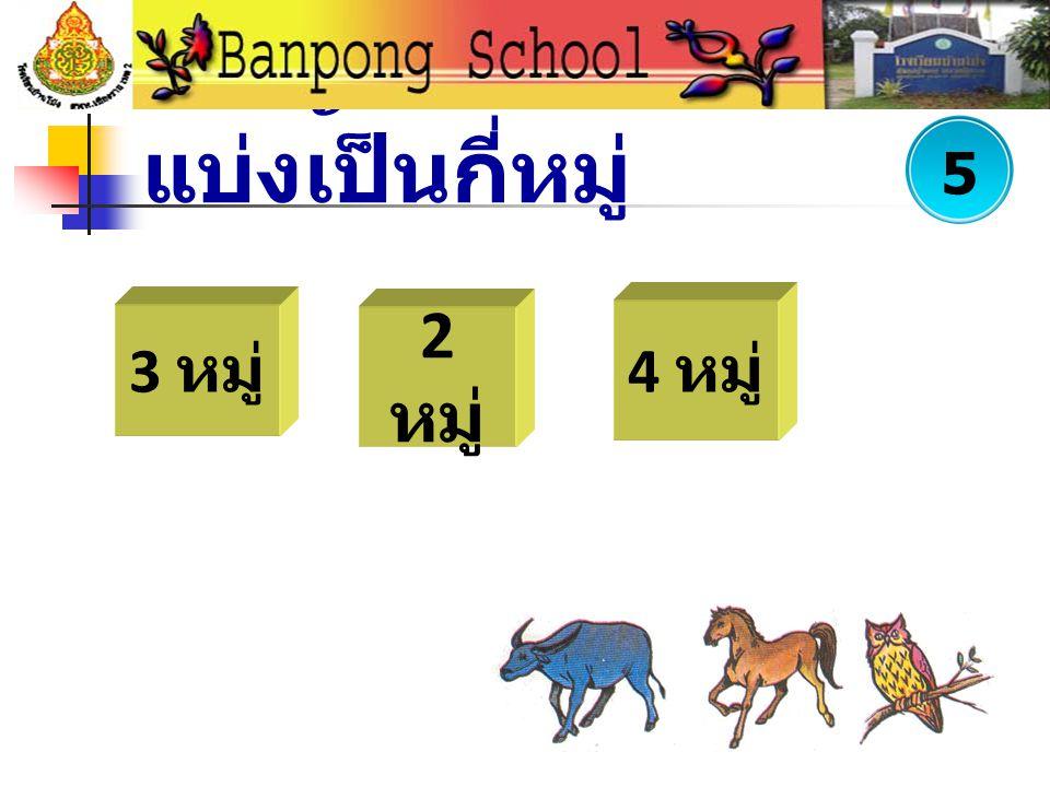 พยัญชนะไทยแบ่งเป็นกี่หมู่