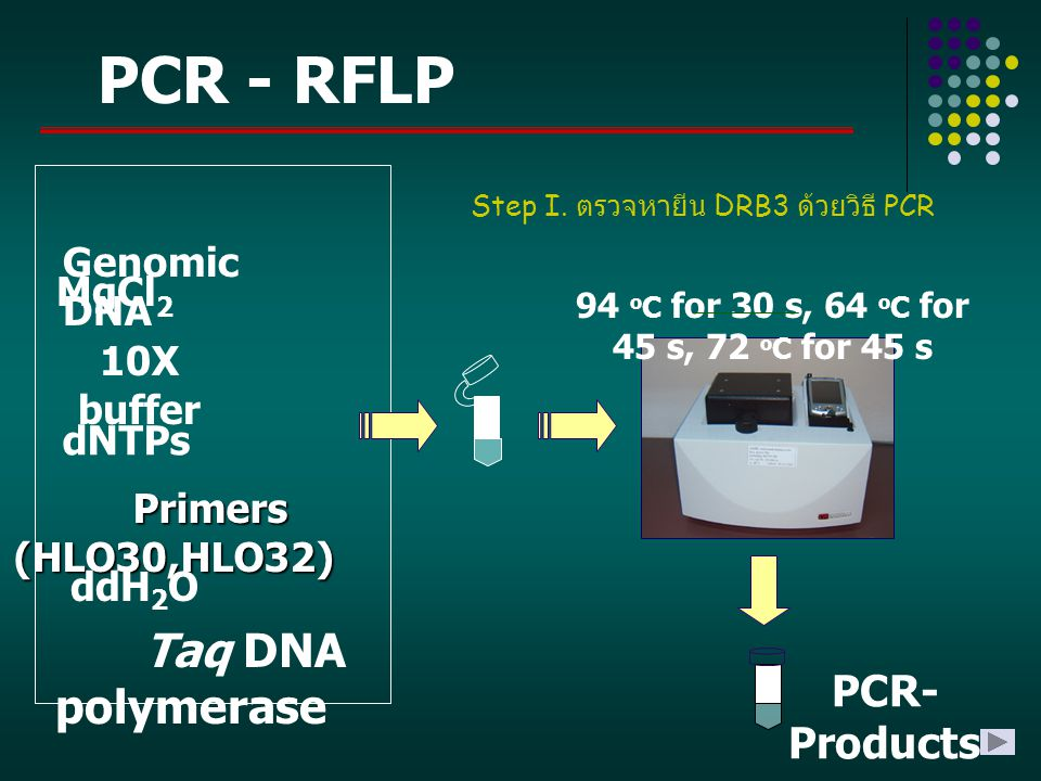 PCR - RFLP Taq DNA polymerase PCR-Products Genomic DNA MgCl2
