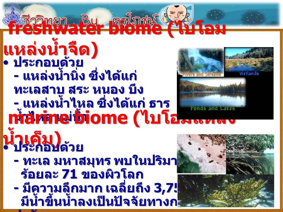 freshwater biome (ไบโอมแหล่งน้ำจืด)