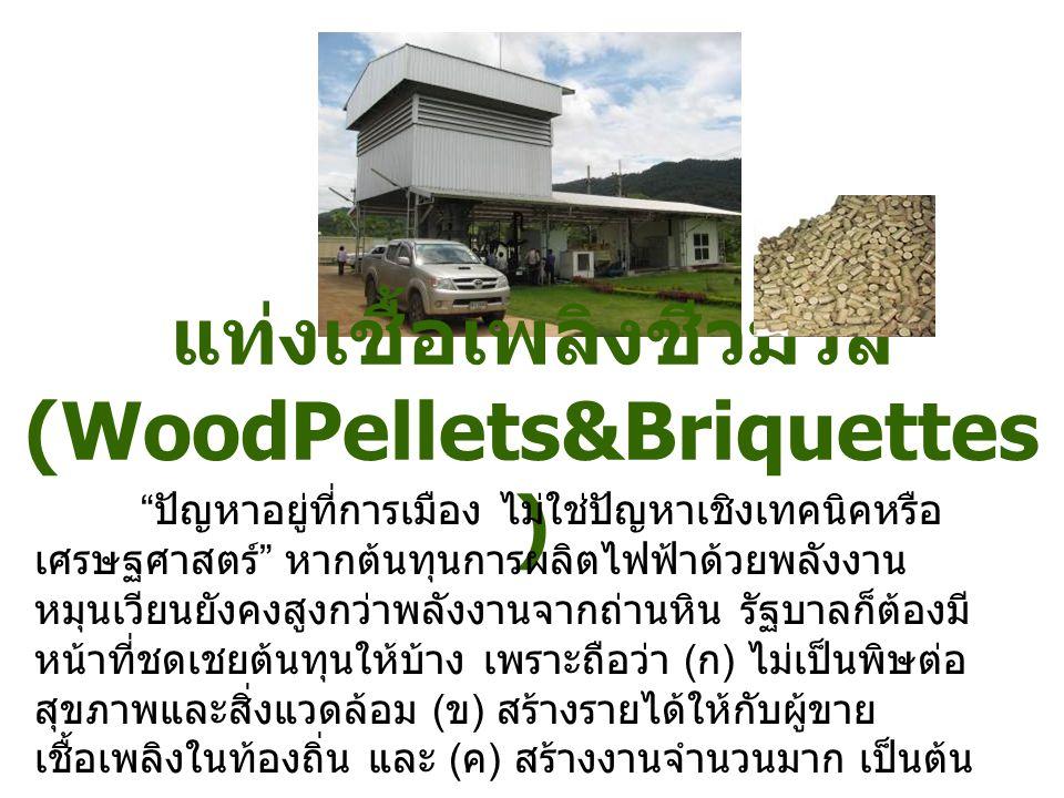 แท่งเชื้อเพลิงชีวมวล(WoodPellets&Briquettes)